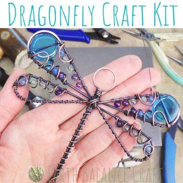 Dragonfly_Kit_16