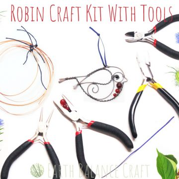 Robin_Craft_Kit_5
