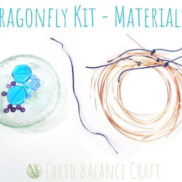 Dragonfly_Kit_No_Tools_1